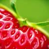 strawberrylips eee na demotach kwejku etc. to bylo Tak to prawda są takie piosenki przy których zamykasz oczy i albo się uśmiechasz albo do oczu podchodzą łzy. Każdy moment ży
