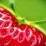 strawberrylips